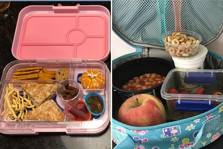 Teachers Moaned These Lunch Boxes Were Unhealthy